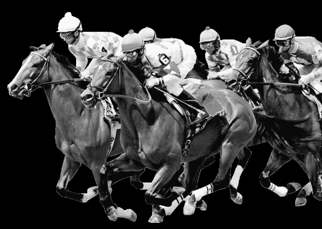 Secret Horse image 2